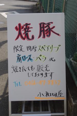 2011_04_16_14_20_52_wp362