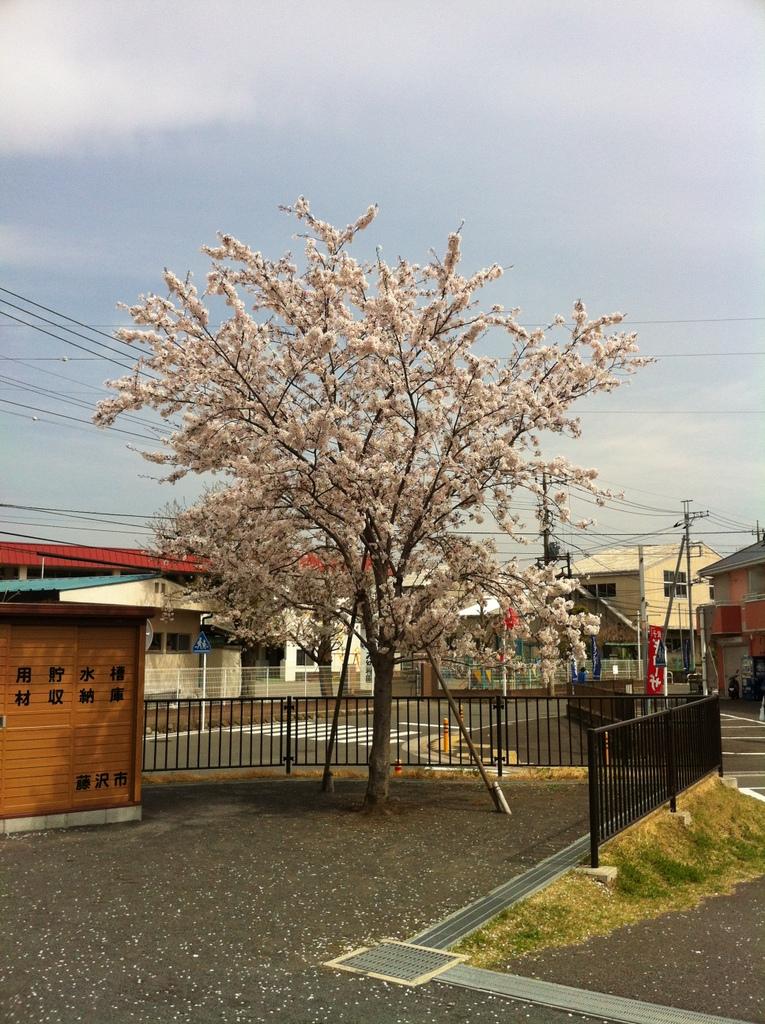 2012_04_13_10_02_58_ip003