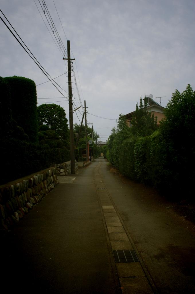 2011_07_26_08_46_34_kx204001