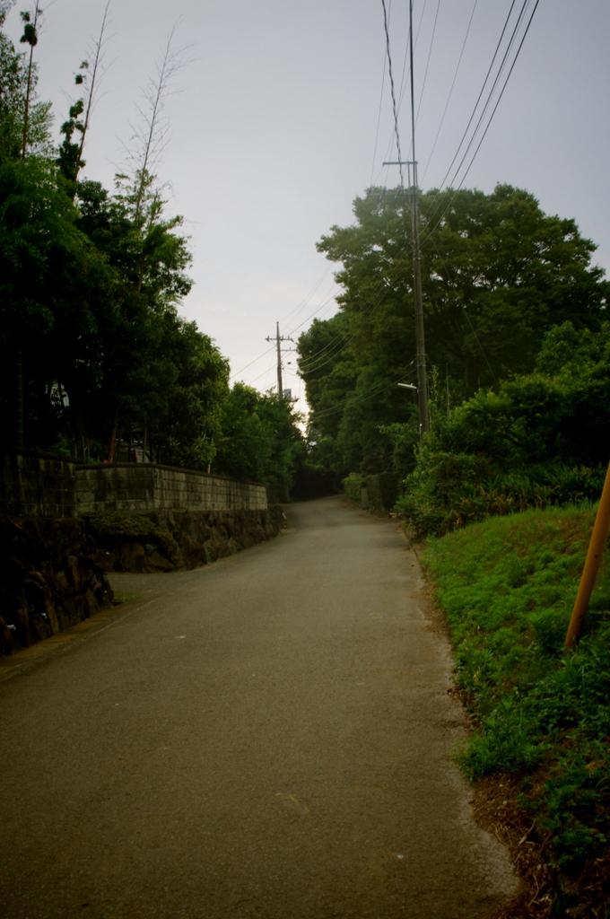 2011_07_26_09_03_12_kx218