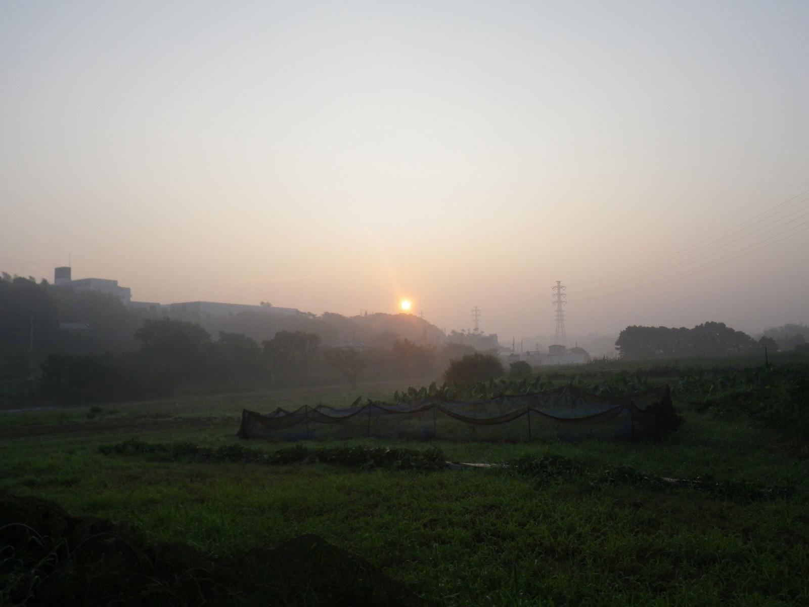 2012_07_27_05_43_06_wp034