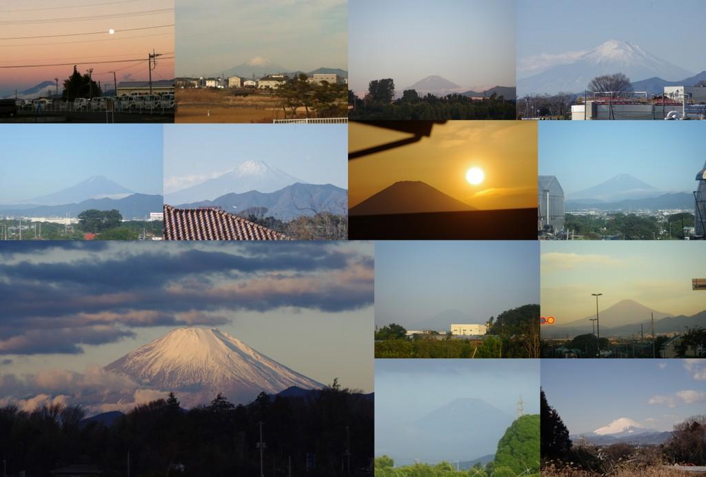_goshomi2012